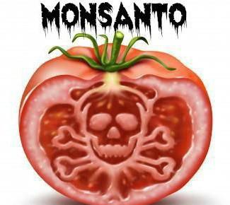 monsanto-tomato.jpg